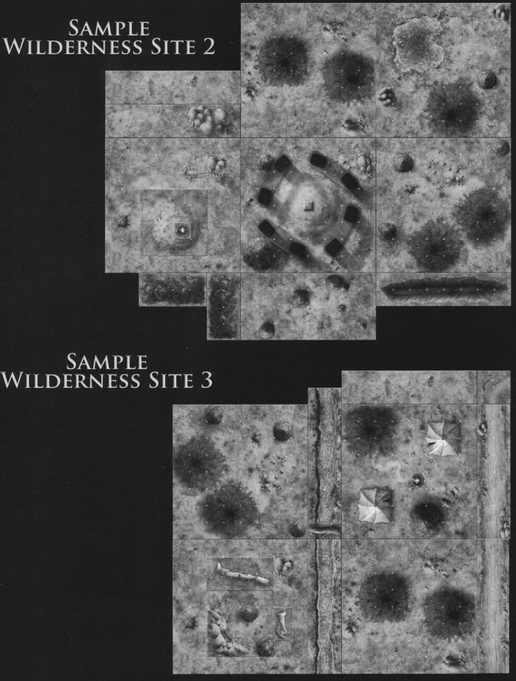 DT4 Ruins of the Wild sample wilderness site 2 & 3