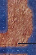 DU7 Desert of Athas 3B